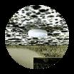 airtek mold management