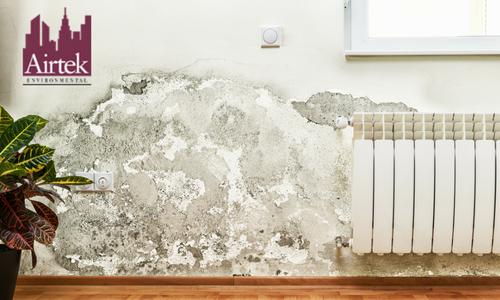 Mold Inspection New York | Mold Inspection NYC | Airtek Environment